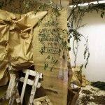 Installation d'une forêt fictive avec l'Espace Numérique !