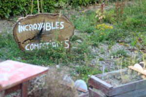 Un jardin partagé à la MJC !