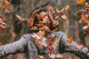 Horaires d'ouverture vacances d'automne